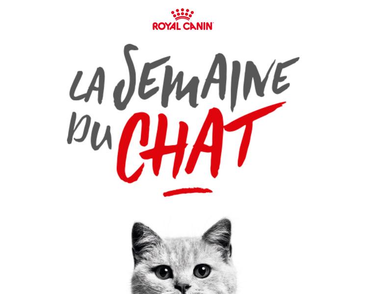 La semaine du chat Royal Canin