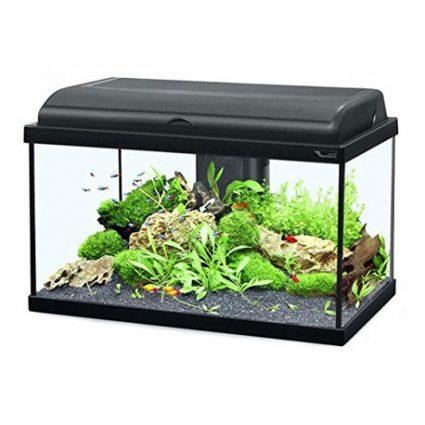 Aquarium Aquatlantis AQUADREAM 80 NOIR