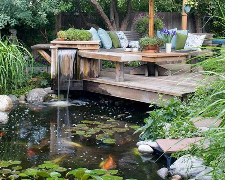 journee speciale bassins de jardin
