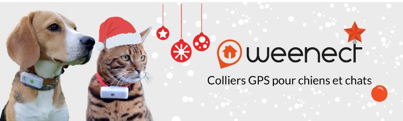 Offre collier GPS chien et chat